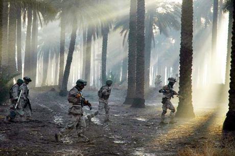 palmgrovesfallijahafp